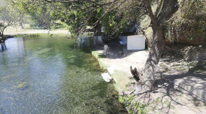 Veracruz: Bañan perros y tiran basura en manantial (El Mundo)