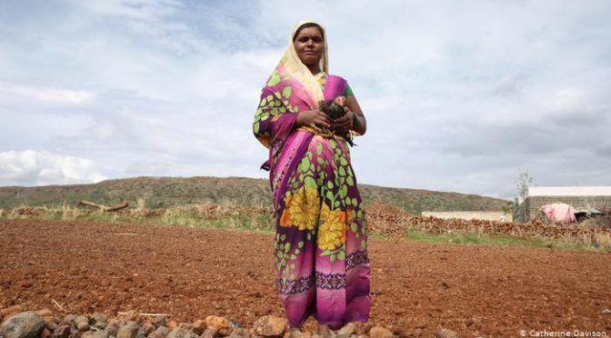 Aldeas fantasma de India: abandonadas por escasez de alimentos y de agua (DW)