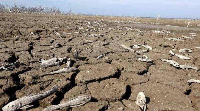 Durango: Pide Gobierno del estado declarar emergencia por sequía (El Siglo de Torreón)