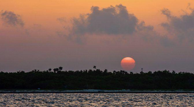 CDMX: CONANP firma convenio con TNC para restaurar dunas en Puerto Morelos (Gobierno de México)