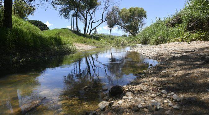 Comunidades de Oaxaca luchan por salvar el gigante contaminado (El Imparcial)