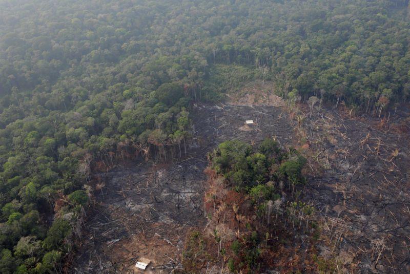 Brasil empieza a combatir incendios de selva amazónica con agua desde aviones militares (24 Horas)