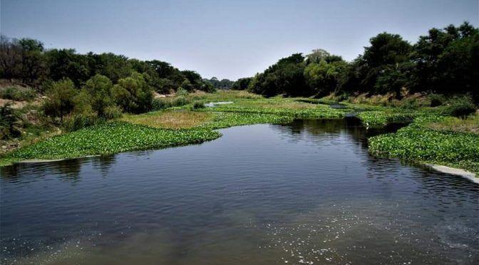 Oaxaca: Buscan sanear el río de Las Nutrias (El Imparcial)