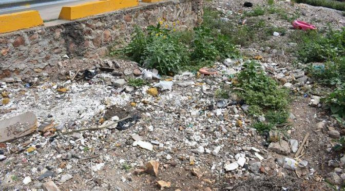 Chihuahua: Proliferan tiraderos de basura a lo largo del río (El Sol de Parral)