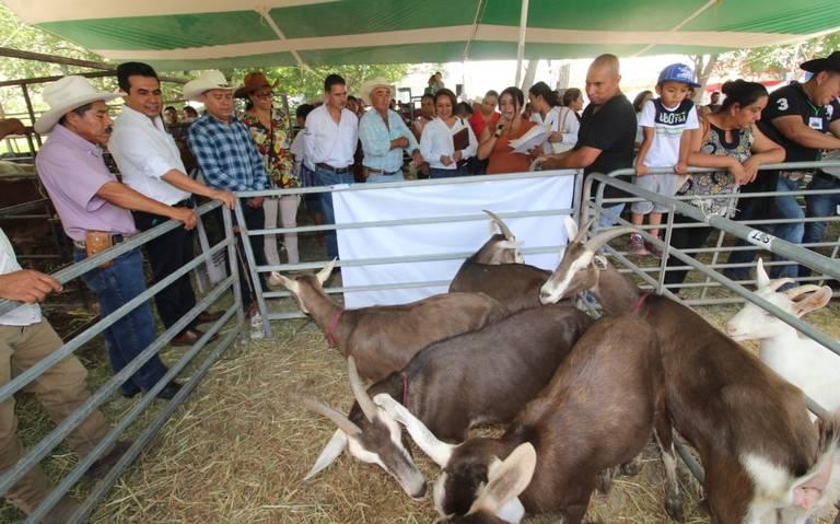 Querétaro: Unión Ganadera dice trasladará agua con pipa (Diario de Querétaro)
