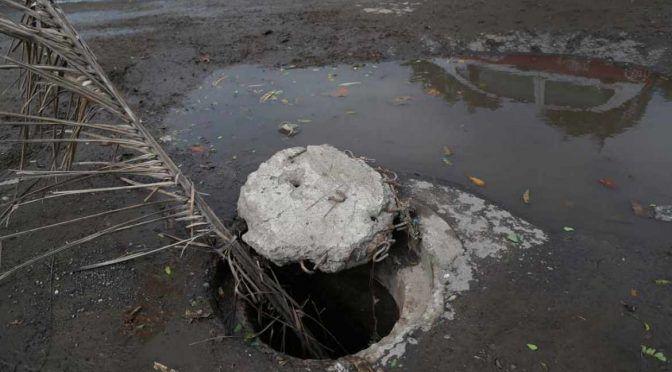 CDMX: Urgen políticas públicas para el cuidado del agua: José Navarro (Diario de México)