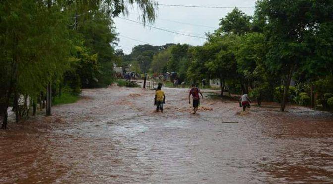 Sinaloa: Con generalización de lluvias, en San Ignacio se olvidan de la sequía (Línea Directa)