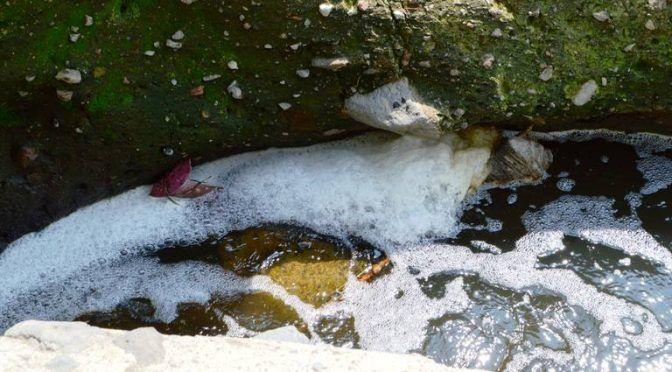 Cuernavaca: Empresas no podrán hacer uso del agua morelense (El Sol de Cuernavaca)