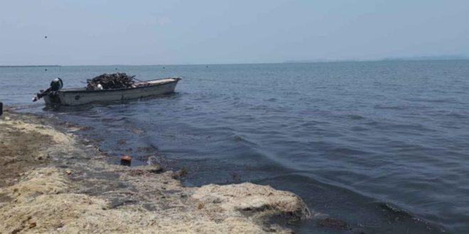 Oaxaca: A la deriva, pescadores del Istmo (Inforural)
