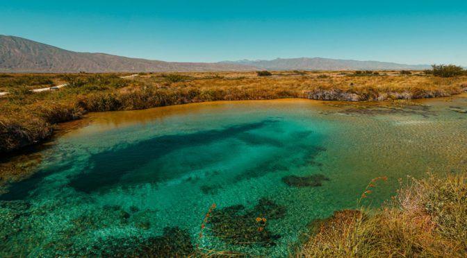 Coahuila: Va UAdeC por rescate de Cuatro Ciénegas (Coahuila Digital)