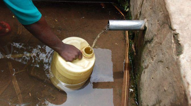 Madrid: El tratamiento del agua, clave para mitigar la infección por lombrices (El Ágora)