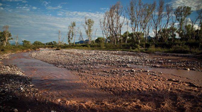 Sonora: Municipios afectados sí cuentan con agua potable: Semarnat (Reporte Indigo)