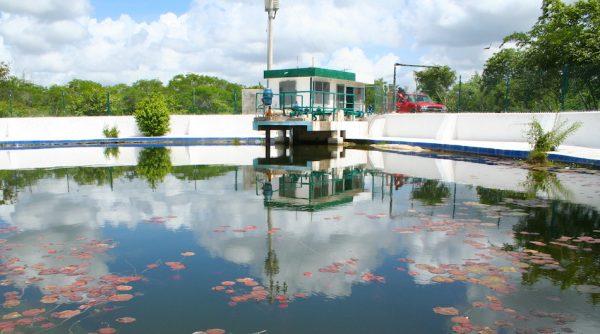 Yucatán: Agua contaminada en el estado, una realidad sin cambios (La jornada maya)