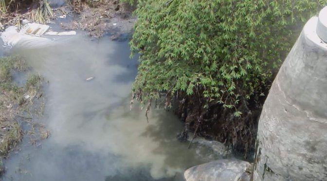 Sinaloa: en Arroyo Jabalines se agudiza el derrame de aguas negras (Noroeste)