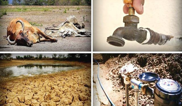 Tamaulipas: Ganaderos guachicolean el agua de la temporalera (Cuarto Poder)