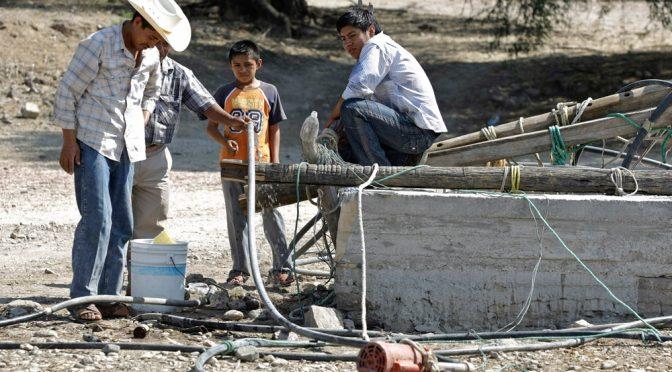 Puebla: Sequía pega a campesinos y ganaderos de Caltepec; hay perdidas fuertes (La jornada de Oriente)