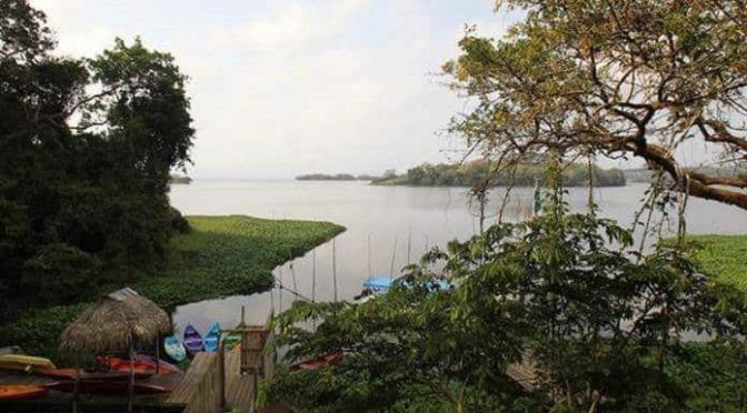 Veracruz: Buscarán anular cinco concesiones que afectarán la Biosfera de Los Tuxtlas (La jornada Veracruz)