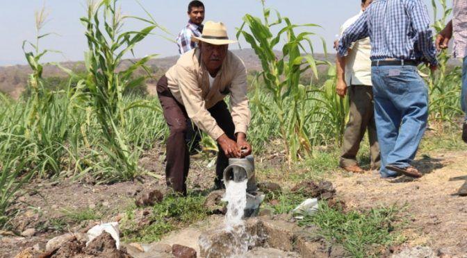 Morelos: Se construirán obras para aumentar el acceso al agua en el campo: Ceagua (Morelos.gob)