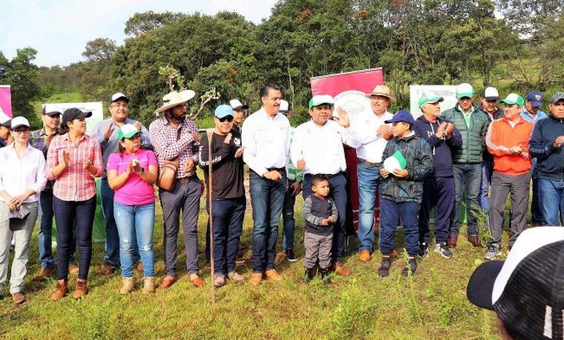 Michoacán: se suma Tribunal de Justicia Administrativa al rescate de acuífero (Quadratín)