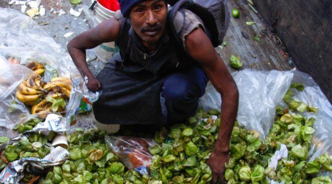 México: Ciudadanos tiran 20 millones de toneladas de alimentos anualmente (Imagen del Golfo)