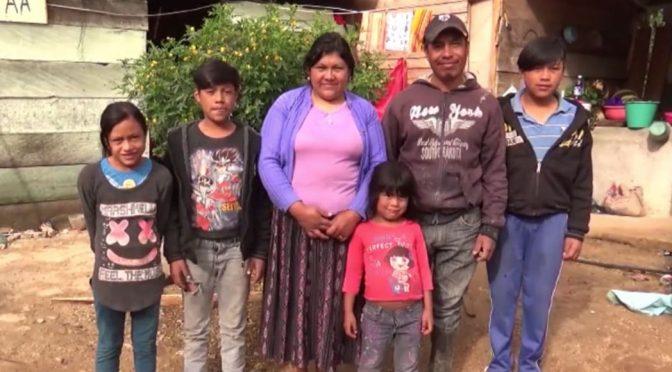 Un proyecto busca que las comunidades de Chiapas vivan libres de humo con estufas ecológicas (Sin Embargo)