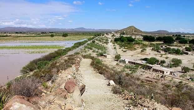 Coahuila: En General Cepeda escasea el agua y abunda la cerveza (zócalo)