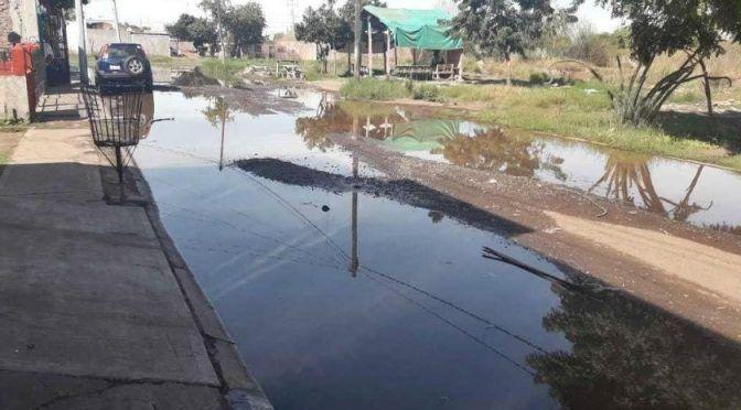 Sonora: Se unen para prevenir enfermedades a causa de aguas estancadas (El Imparcial)