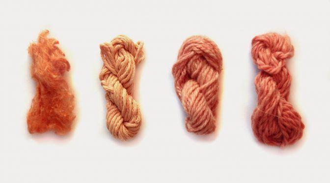 Estados Unidos: Millenials reinventan la Moda con pigmentos de aguacate, nopal, rosas… (ContraRéplica)