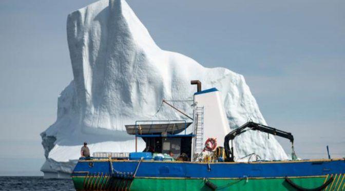 Cazadores de icebergs en busca del agua más pura del planeta (ABC)