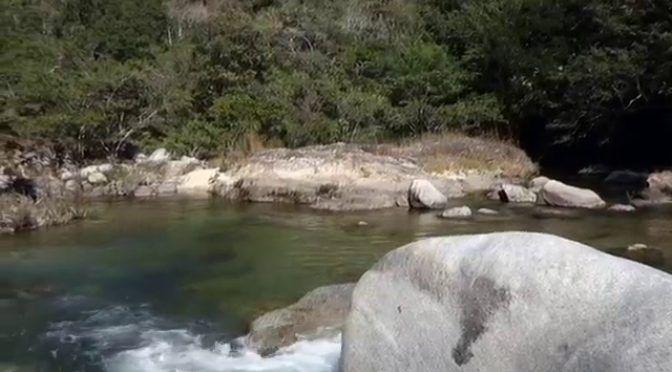 Jalisco: Investigan posible aprovechamiento ilegal de agua en río Horcones (Tribuna de la Bahía)