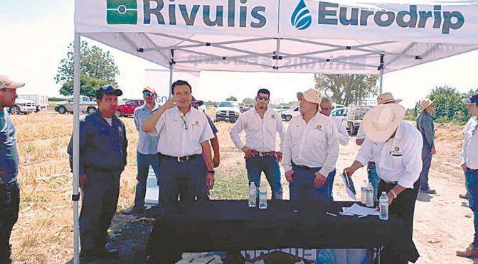 Coahuila: LAMSA demuestra beneficios del sistema de riego por goteo (Milenio)