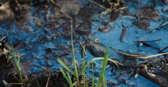 CDMX: Estudio compila hallazgos de contaminación por fármacos en el agua (Tecnológico de Monterrey)