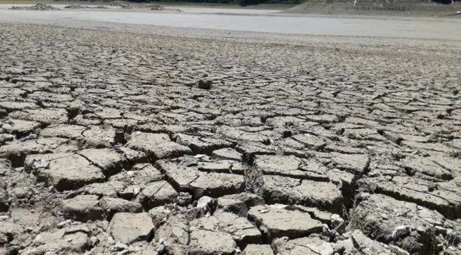Chiapas: Reportan sequía de laguna de Metzabok, en la Selva Lancandona (Publimetro)