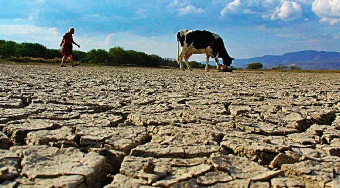 Chile: La guerra del agua: las graves secuelas de la crisis hídrica (El Mostrador)