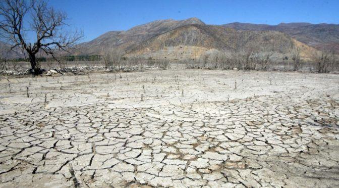 Mundo: Enfrentar la sequía (El mostrador)