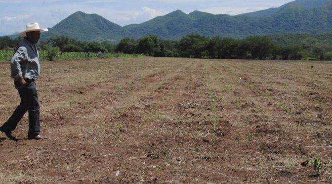 Veracruz: Por sequía, hay 50 municipios con desabasto de agua (La Silla Rota)