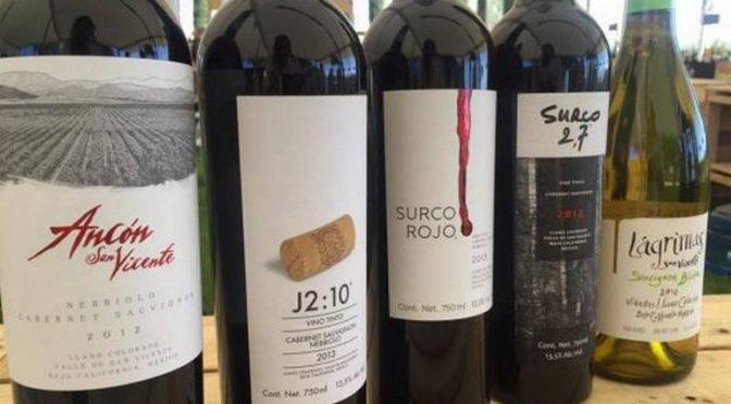 Baja California: Industria del vino necesita fuentes de agua: Valladolid Seamanduras (La Voz)