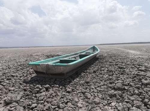 Tamaulipas: Se secan pozos, abrevaderos y tres lagunas (La jornada)