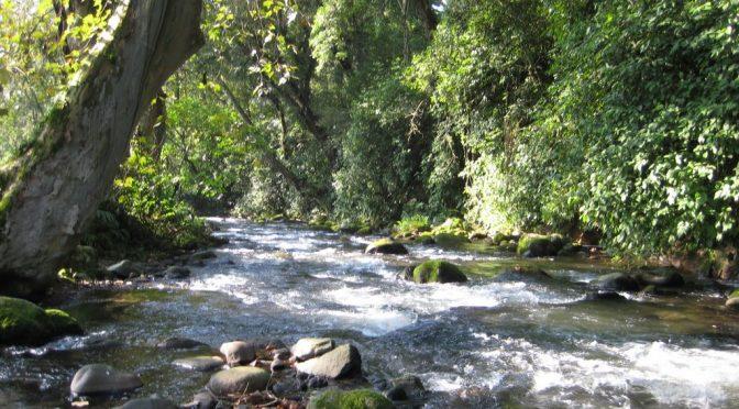 Edomex: ODAPAS Chimalhuacán gestiona y supervisa trabajos previos al revestimiento del río Coatepec (notimx)