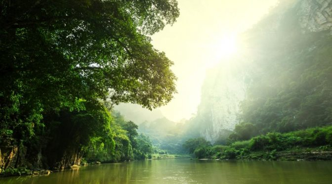 Afectados varios ríos tropicales por el hombre en el mundo (El Siglo de Torreón)