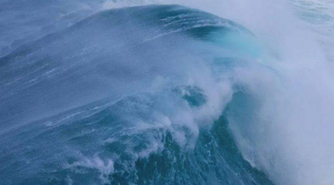 España: El sonido del agua como único narrador: la película que reinventa los documentos de naturaleza (El País)