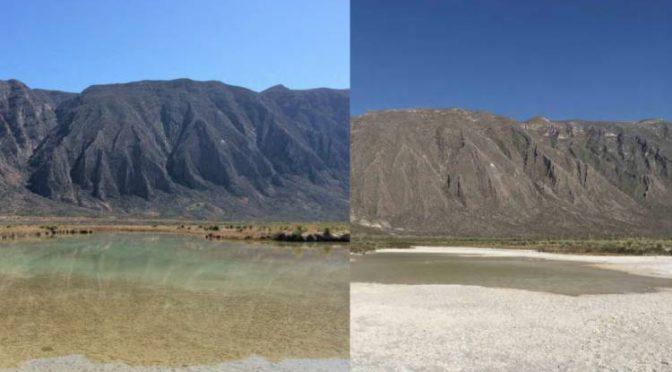 Coahuila: Las imágenes de Cuatrociénegas que muestran cómo se está secando el valle (WRadio)