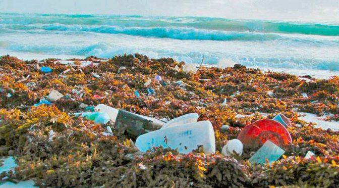 Vecinos recolectan 40 toneladas de basura del Río Querétaro (Meridiano)