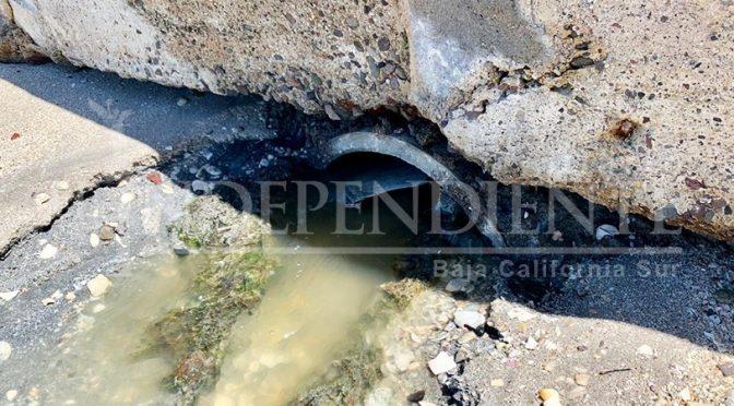 Baja California Sur: Descarta Coepris presencia de aguas negras en el malecón de La Paz (El Independiente)