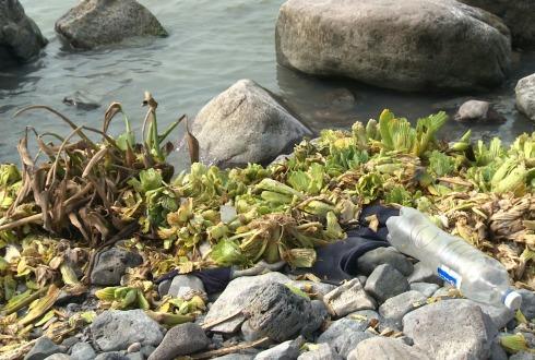 Guadalajara: Contaminación de agua y cultivos daña salud de habitantes de Autlán (NTR)