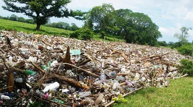 Veracruz: Pescadores voluntarios limpiarán el río Blanco  (El Heraldo de Veracruz)