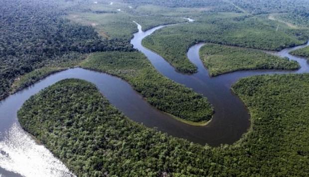 La derecha sudamericana estimula la destrucción del medio-ambiente (Kaosenlared)