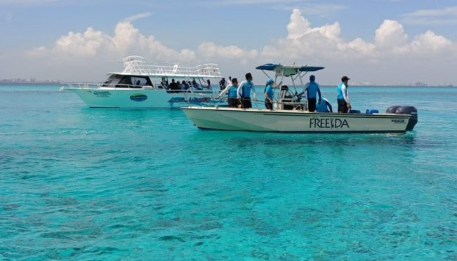 Quintana Roo: Arranca siembra de 3 mil 100 corales en arrecifes de Cancún e Isla Mujeres (El Universal)