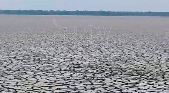 Tamaulipas: Ante la falta de lluvia se están secando lagunas en Altamira (Hoy Tamaulipas)