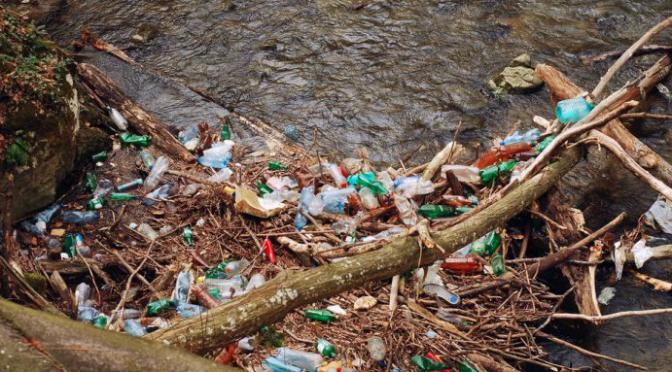 Veracruz: Urge detener contaminación en los ríos (El Mundo)